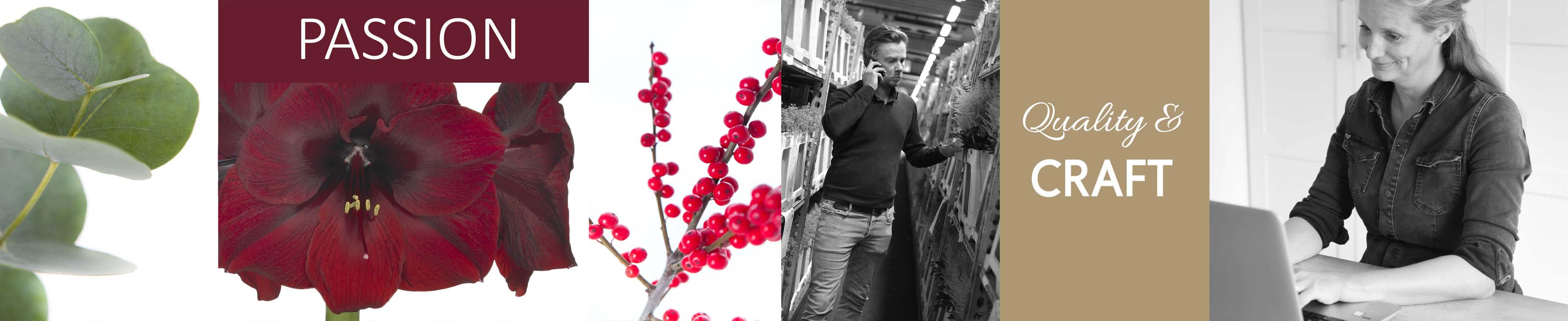 banner-min-versie-winter-1024x210